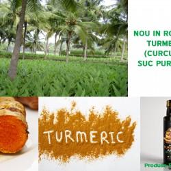 TURMERIC CURCUMA - suc pur 100%