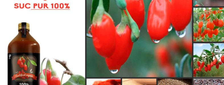 goji-pret-suc-fructe-slabit-ceai-seminte
