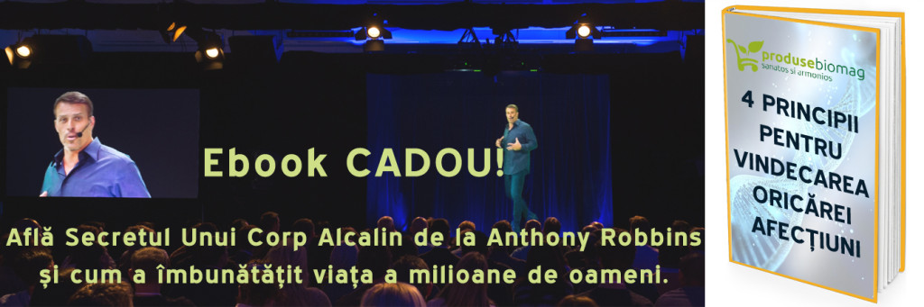 E-BOOK-GRATUIT-ANTHONY-ROBBINS