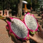 RED-DRAGON-FRUIT-JUICE-PUREE-Pitahaya-fructul-dragonului-pitaya4