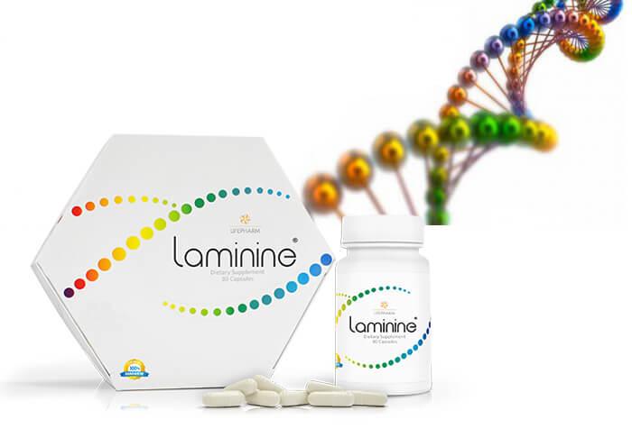Laminine pret laminina cancer laminin pareri